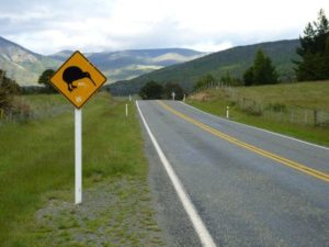 Low Risk Driver Training Courses in New Zealand
